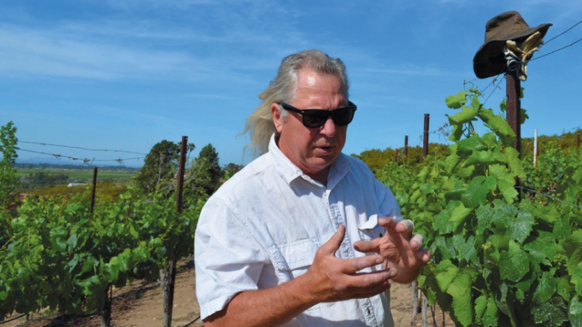 Bruce Freeman talking wine grapes in Saticoy.